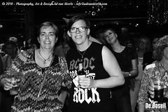 2016 Bosuil-Het publiek bij de 30th Anniversary Steady State 84-ZW