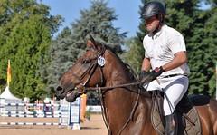 DSC_0907 (2) (ploufjf_64) Tags: paus show jumping chevaux pau 2016