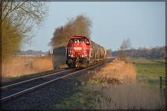 DSC_1755-261096_EK53422_Eddelak (Marschbahner98) Tags: db güterzug kesselwagenzug kbs130 marschbahn eddelak anschlussbahn übergabe diesel diesellok rangierlok voith gravita 10bb