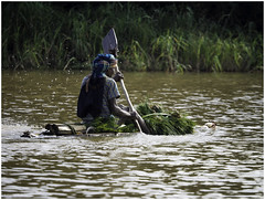 Traditional Papyrus Boat on Lake Tana (Luc V. de Zeeuw) Tags: boat ethiopia lake laketana man papyrus rowing water bahirdar amhara