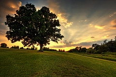 Over the Hill (jonathon lynam) Tags: sunset kildare maynooth carton house cartonhouse nikond40 nikon nikonphotography landscape ireland blue yellow green gold hill