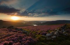 Heather (m00chas) Tags: canon eos 6d canoneos6d canon1635mm28l landscape landscapes peakdistrict derbyshire bamfordedge bamford sunset sunrays heather