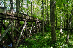 Mabry Mill BRP May 2015 -41 (Webtraverser) Tags: blueridge blueridgeparkway gristmill mabrymill mountains nps nationalparkservice virginia meadowsofdan unitedstates us