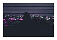 Lights (Mizael Ribeiro) Tags: light city chill mizael purple wind girl transict cars cold