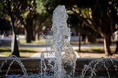 Agua (raperol) Tags: agua fuente parque jardín cádiz 5dsr water garden airelibre