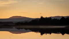 Lake of Menteith reflected (Premysl Fojtu) Tags: lakeofmenteith lake loch water waterscape landscape evening winter reflection reflected mirror glass calm beautiful dreamscape dreamy scotland uk trossachs national park nature dslr canon eos 350d lowlight colour orange