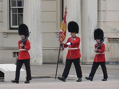 Img555051nx2 (veryamateurish) Tags: unitedkingdom british military army london wellingtonbarracks changingoftheguard publicduties ceremonial guardmounting newguard footguards householddivision grenadierguards