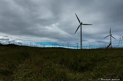 """Je m'inclne"" (pascaleforest) Tags: paysage landscape nature passion nikon olienne windturbine"