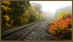Fall Crossing (barbdpics) Tags: barbdpics nikond4 fall fallphotography leadinglines railroadtracks cambridgeontario ourdailychallenge odc pointy orton