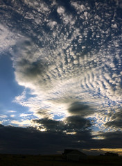 Alto-cumulus (Mackerel Sky) (northern_nights) Tags: sunset altocumulus clouds sky fishscaleclouds explore cheyenne wyoming markerelskies