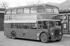 ORM141 Cumberland 359 (lenmidgham) Tags: 1960sbus bwscan bristol bristolcommercialvehicles cumberland ecw