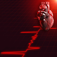 heartimage (mghresearchinstitute) Tags: abstract anatomy aorta background blood red cardiology health healthcare healthy heart heartbeat human internalorgan medical medicine pulsating pressure stress vein anatomical artery attack blockage bypasssurgery cardiovascular chambers circulation coronary flow hardening healthsymbol heartattack heartsurgery illness internal concept motion organ symptoms treatment vascular wellness