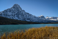 Waterfowl Lake (Witty nickname) Tags: jaspernationalpark jasper banffnationalpark banff waterfowllake icefieldsparkway autumn fall mountain lake nature snow rockymountains albertalandscape alberta landscape