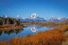 Oxbow Bend, Grand Teton National Park. (scepdoll) Tags: yellowstonenationalpark wyoming montana geysers norris oldfaithful cyanobacteria bluegreenalgae oxbowbend grandtetonnationalpark
