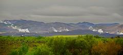 _DSC3599 (andoni.guridi) Tags: myvatn lago lake iceland islandia summer verano uda agosto august paisaje landscape