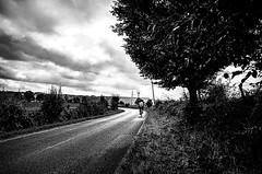 The Cyclist (Tom Cuppens) Tags: stoumont straatfotografie zwartwit ardennen ardennes wallonie wallonnie belgium belgique belgie noiretblanc road rue chemin straat weg