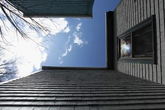 look up (S.L.M.) Tags: sky shingles 365 halifax