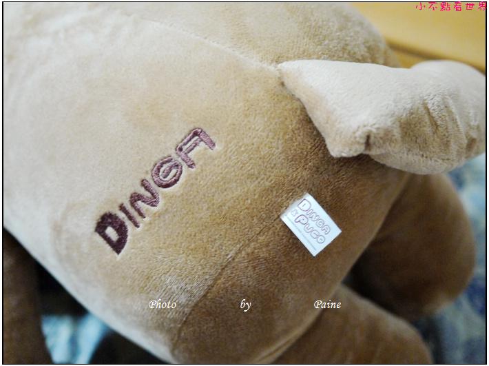DINGA (3).JPG