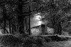 Dreamy Cottage in the Woods (DSF_8783) (Param-Roving-Photog) Tags: foggy fog morning cottage hut house woods forest trees dreamy travel nature wallpaper mussoorie uttarakhand india blackandwhite bw monochrome nikon d750 nikkor 70200f28