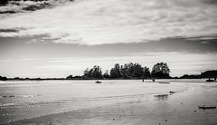 Chesterman Beach (Cyrielle Beaubois) Tags: 2016 bc britishcolumbia canoneos5dmarkii cyriellebeaubois tofino ucluelet vancouver travel canada landscape island pacific ocean pacificrim national park beach chesterman