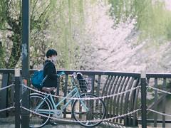 Fushimi momoyamaKyobashi (slipper55) Tags:  streetphotography  pepole   kyoto fushimi  japan japanese 75mm micro43