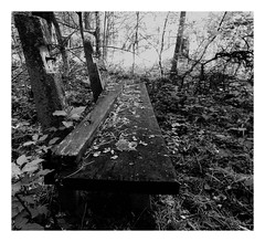 All Things Must Pass (kurtwolf303) Tags: bench bank wald forest woods monochrome desolate nikoncoolpixs9900 compactcamera verwittert alt vermodert rotted sw bw dark dunkel unlimitedphotos lostplace topf25 250v10f topf50 500v20f topf75