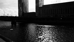waterway (damonabnormal) Tags: bw blackandwhite urbanphotography philadelphia august 2016 summertime water river waterway tones dark engineering schuylkillriver