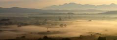 misty morning (maria xenou~photodromos~) Tags: landscape mist morning sunlight moments motion nature natur summer sommer landschaft         misty nebel panorama sky