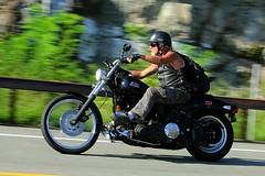 Harley-Davidson 1608203422w (gparet) Tags: bearmountain bridge road scenic overlook motorcycle motorcycles goattrail goatpath windingroad curves twisties outdoor vehicle