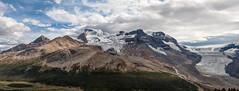 (Glenn Jasechko) Tags: athabasca glacier wilcoxpass athabascaglacier wilcoxcreek icefieldsparkway rockymountains jaspernationalpark