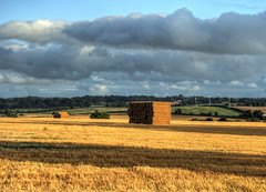Haystacks near Crawley in Hampshire (neilalderney123) Tags: 2016neilhoward hay straw windturbines landscape haystacks rural winchester crawley hampshire harvest