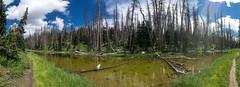 Cedar Breaks National Monument (RuggyBearLA) Tags: cedarbreaks nationalmonument utah us unitedstates redrock hoodoo geologybrianheadutahunitedstatesus