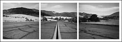 Hornbrook backroad triptych (ASHLANDJET) Tags: film rolleiflex 35e planar triptych rolleiflexpanoramahead ilfordxp2 mediumformat 120 blackandwhite monochrom analog hornbrook california road vintagecamera tlr square 6x6