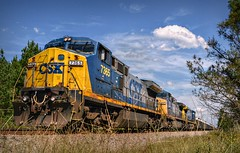 Good things come to those who wait (builder24car) Tags: railfanning benchingthefreights locomotive csx csx7365 csx247 c408w ac44cw nature landscape thegreatoutdoors hoffmannorthcarolina