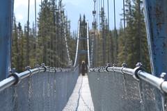 Kootenay Plains ER (Alberta Parks) Tags: kootenay plains ecological reserve alberta parks bridge people infrastructure