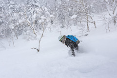 Adventure Boarding (robertdownie) Tags: trees forest mountains winter cold tree japan snowboard ski white snow mountain ice wonderland snowboarding deep hokkaido powder boarding adventure tranquility