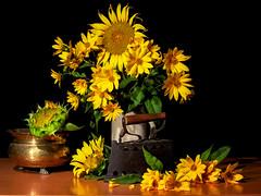 Girasoli e fiori gialli (voste78) Tags: girasole ferrodastiro vaso rame petali giallo foglie hasselblad planar80c cf22 digital flash studio stilllife