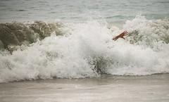 2016 07 LAX santa monica beachday fire-220.jpg ((aka deederdog)) Tags: littlestories locationsairportcode marketpeople sea littlestoriessea portfolio marketselect places purpleflag