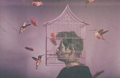 Disorders bird, caged. (jcalveraphotography) Tags: portrait photo photographer projects cage selfportrait selfie serie studio bird 365
