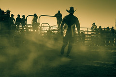 New Sheriff in Town (Tazmanic) Tags: cowboy rodeo mexico baja california primo tapia spectators sheriff hat bulls