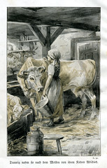 """Die Zwillinge"" Illustration 1 (altpapiersammler) Tags: buch book vintage alt old sch illustration kuh cow vache vaca mucca  krowa melken milch milk drawing draw zeichnung buchillustration oldprint"