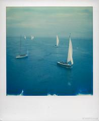 Yacht Race (Roj) Tags: originalphotographers sx70 sourcerojsmithtumblrcom blue water boats see beaumaris yachtrace originalphotographer instantphotography polaroid impossibleproject photographersontumblr