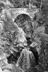 DSC_0086bw (daviemoran1) Tags: mono bruar forest river waterfall trees perthshire scotland nature landscape scenic bridge highland