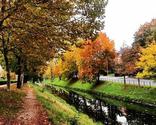 #autumn #nature #canal #klagenfurt #trees #naturephotography #fall #colorful #igers #instagood #instamoment #travelgram #travel #igers #widenyourworld #passionpassport