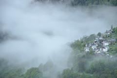 Waking up (darioseventy) Tags: mountains montagne trees alberi fog nebbia nature natura silence silenzio peace pace quiet quiete