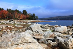 Some Bumps Along the Way (yelovet00) Tags: foliage water rocks quabbin low drought