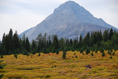day hiking_Kananaskis Country_5 (Alberta Parks) Tags: outdooractivities people dayhike hike walk hiking mountains parks recreation activity