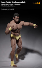 PHICEN PL2016-M34 Male Muscular Builder - 05 (Lord Dragon ) Tags: 16scale 12inscale onesixthscale actionfigure doll hot toys phicen seamless male body