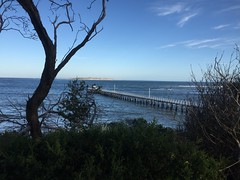 Through the Trees (nick_ciantar) Tags: beach sunset victoria new south wales australia sydney melbourne queenscliff point lonsdale lighthouse sun sand city harbour bridge trees cliffs water lights dish stars mountains blue pier mcg opera house parkes clouds