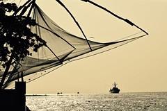 To Catch a Ship (The Spirit of the World) Tags: nets fishingnets fishing harbor kochi cochin sea arabiansea india kerala southernindia bird fowl nature fortcochin